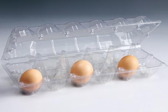 Khay trứng
